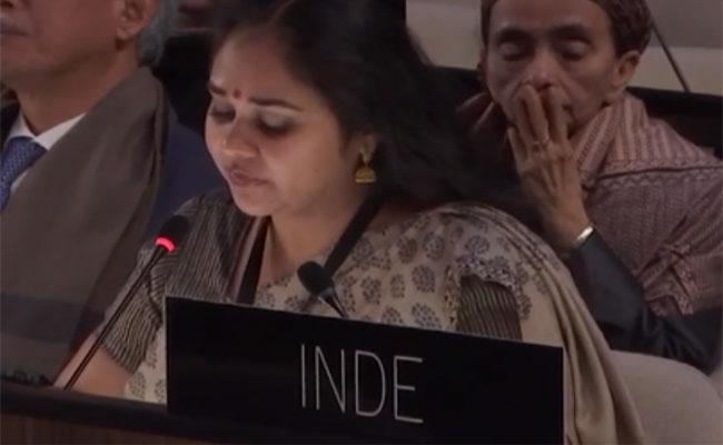 DNA Of Terrorism Is In The Blood Of Pakistan Says India IN UNESCO Meeting In Paris - Sakshi