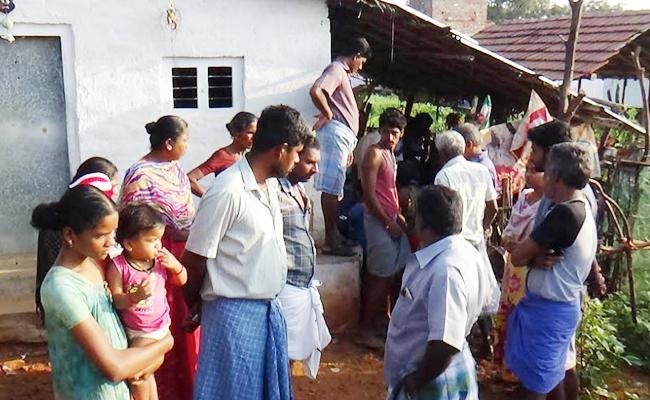 Tiger Hunting Goats in Selam Tamil Nadu - Sakshi
