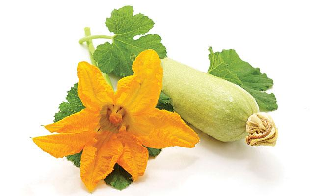 Luffa curry is very good for health - Sakshi
