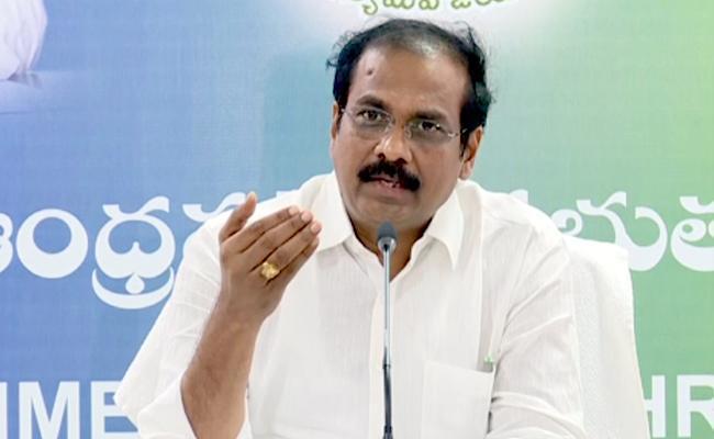 Minister Kurasala Kannababu Fires On Chandrababu Naidu - Sakshi