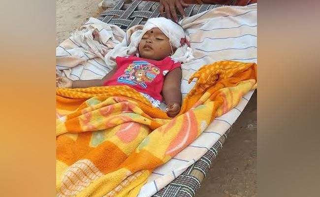 18 Months girl Child Died In Nalgonda - Sakshi