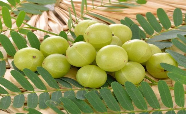 Take More Vitamin C Fruits In Winter Season For Healthy Skin - Sakshi