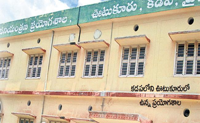 Agronomy Laboratory Established In Kadapa Over Fraud Seeds - Sakshi