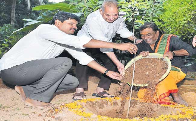 Actor Krishna Participated In Green India Challenge - Sakshi