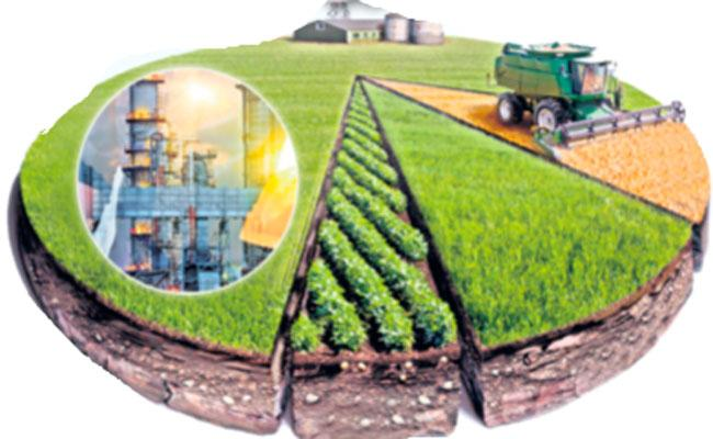 Government Steps Towards Industrial Development In Anantapur - Sakshi