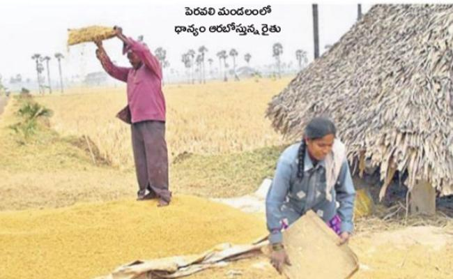 Farmers Happiness With High Yields - Sakshi
