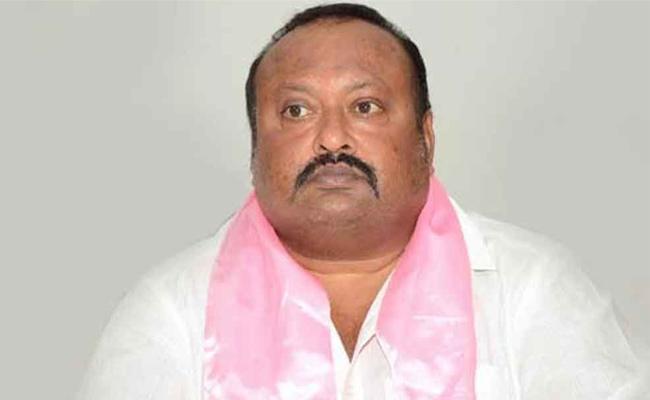 Gangula Kamalakar Said People Is The Owner For TRS Party - Sakshi