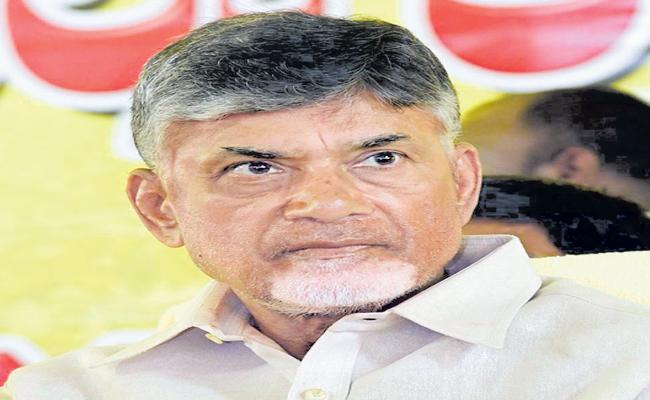 Chandrababu comments at a wide range of TDP meeting - Sakshi