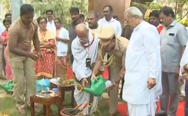 AP Governor Biswabhusan Harichandan Planted The Plants - Sakshi