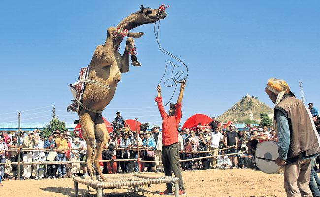 Rajasthan Ajmers Famous Pushkar Mela Begins Many Nationals - Sakshi