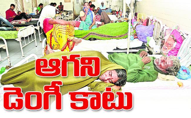 Dengue Deaths Continue In Mancherial - Sakshi