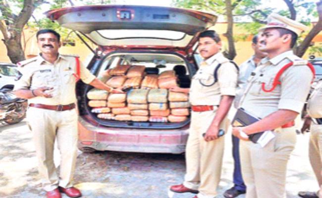 Marijuana smuggling in PSR Nellore - Sakshi