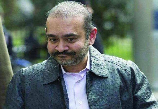 Nirav Modi Says will kill Himself if Extradited to India - Sakshi