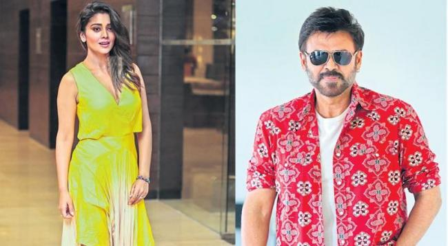 Venkatesh, Shriya Saran to star in Telugu remake Asuran - Sakshi