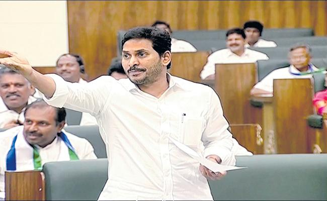 CM YS Jagan Comments on Onion Prices In Assembly - Sakshi