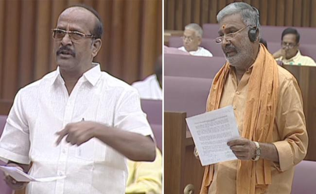 Minister Peddi Reddy Fires On TDP MLC Rajendra Prasad In Legislative Council - Sakshi