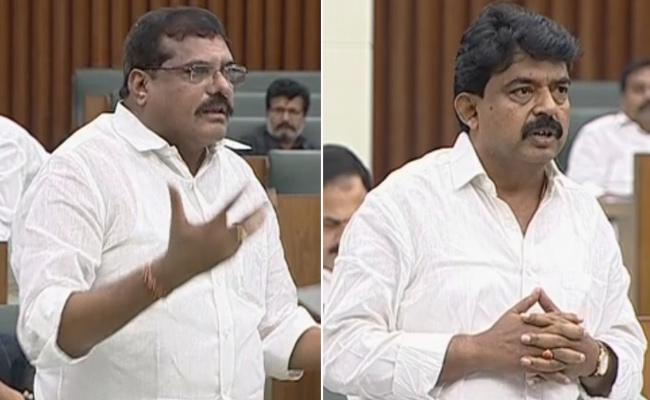 Botsa Satyanarayana Speech In AP Assembly - Sakshi