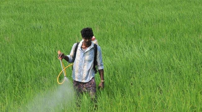 awareness and training of farmers dec 22 - Sakshi
