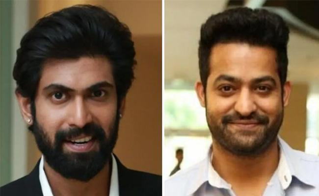 Some Stars Miss The Silver Screen In 2019 - Sakshi
