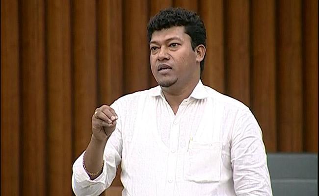 AP Assembly Sessions YSRCP MLA Sidiri Appala Raju Slams Chandrababu Naidu - Sakshi