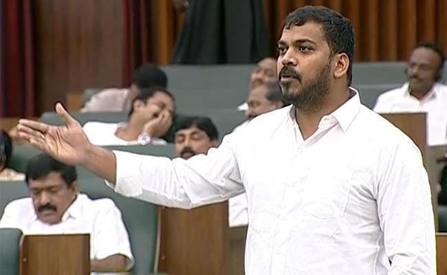 Minister Anil Kumar Yadav Comments On Nara Lokesh - Sakshi