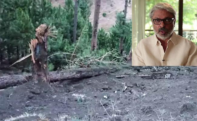 Sanjay Leela Bhansali Announce Movie On Balakot Airstrike - Sakshi