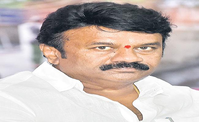 Talasani Srinivas Yadav Speaks Over Development Of Poultry Sector - Sakshi