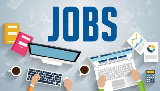 Tech startups created over 60000 direct jobs this year - Sakshi