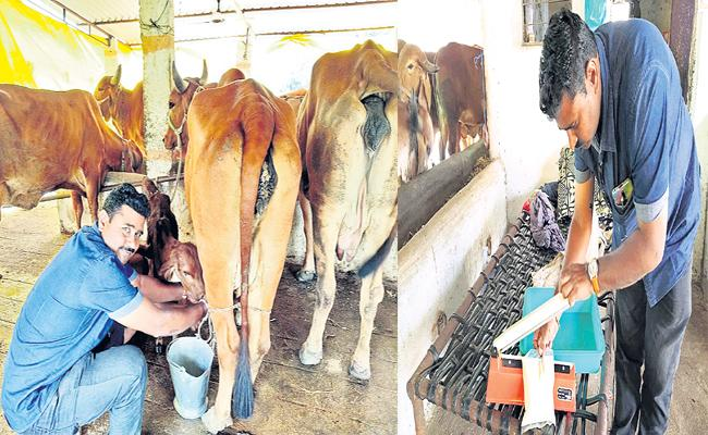 Mixed Agriculture By Kadtal Young Farmer - Sakshi