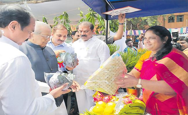 Woman Farmer Padmavathi Cultivate Dragon Fruit In Her farm - Sakshi