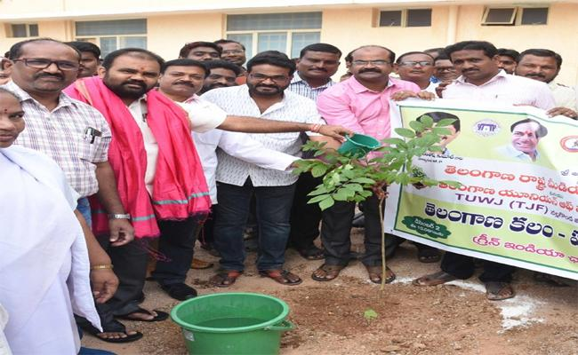 MLA Planted in Nalgonda Government Hospital - Sakshi