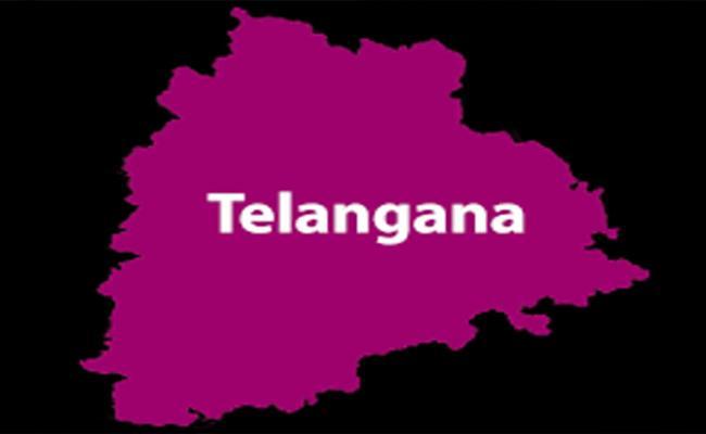 Telangana Got Third Place For Sustainable Development - Sakshi