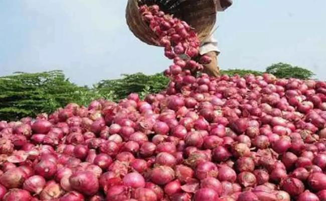 CM YS Jagan orders to officials on Onion Prices - Sakshi