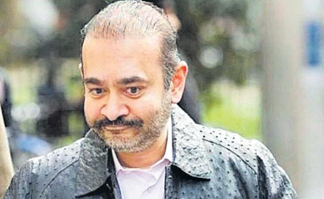 Nirav Modi Declared Fugitive Economic Offender - Sakshi