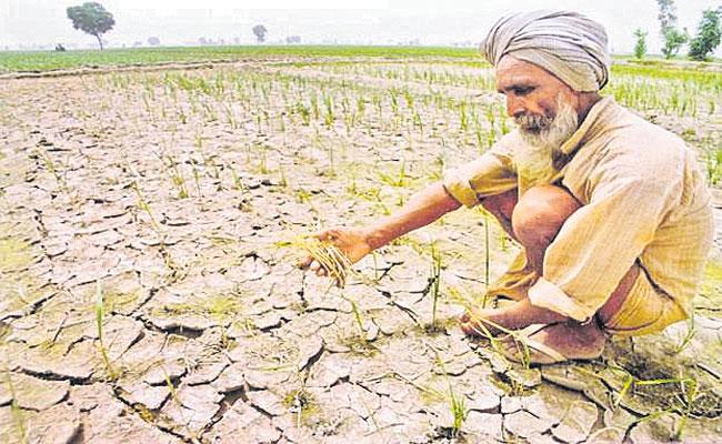 Devinder Sharma Writes Article About Farmers Getting Less Revenue In Small Scale Agriculture - Sakshi