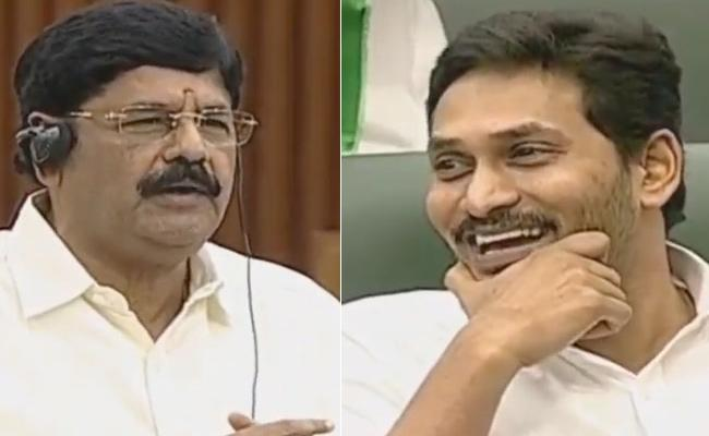Anam Ramanarayana Reddy Comments in AP Assembly - Sakshi