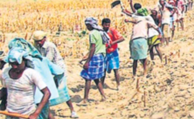 Identification Of Works Worth Rs 1800 Crore In NREGS - Sakshi