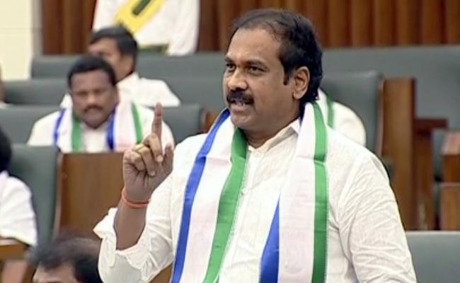Minister Kurasala Kanna Babu Fires On Chandrababu - Sakshi
