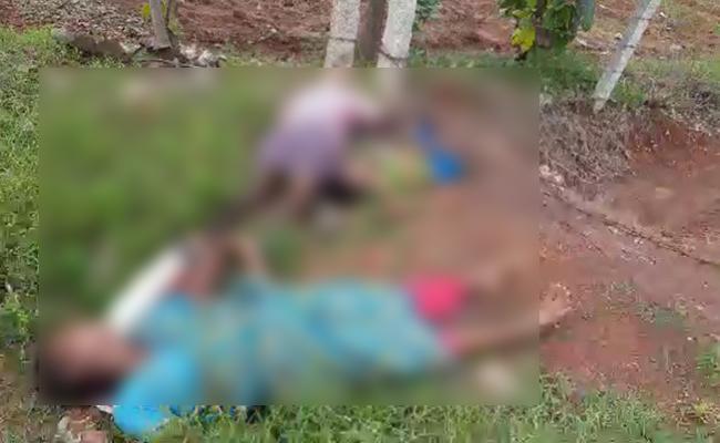 Three Farm Workers Die Of Electrocution In Srikalahasti At Chittoor - Sakshi
