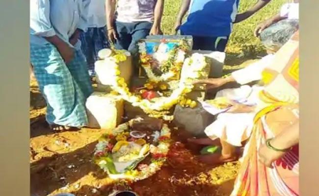 Karnataka Villagers Perform Last Rites of Beloved Pet Monkey - Sakshi