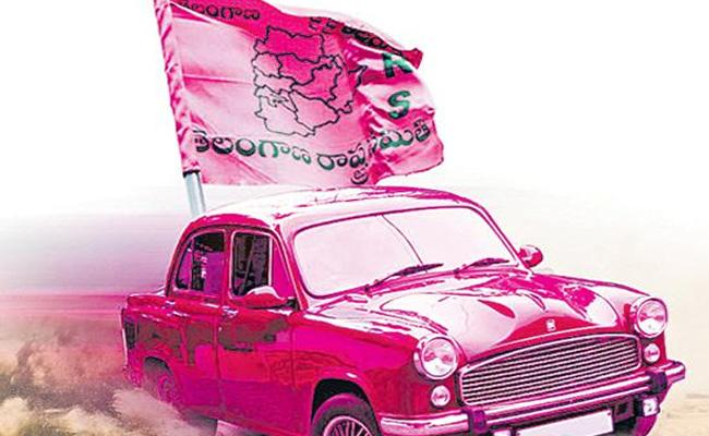 TRS Party Have Ex Officio Strength In Municipal Elections - Sakshi