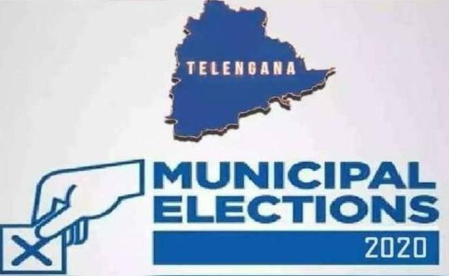 19,673 Municipal Contestants For Municipal Elections - Sakshi