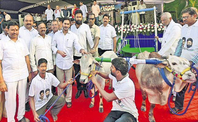 YS Jaganmohan Reddy Participated in the Sankranti Celebrations - Sakshi