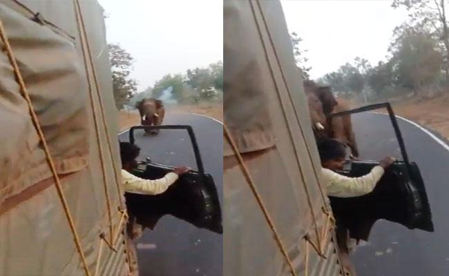 Viral Video: Angry Elephant Chases Truck In Karnataka - Sakshi