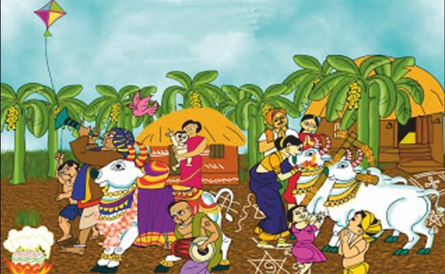 Sankranthi Festival Customs And Traditions - Sakshi