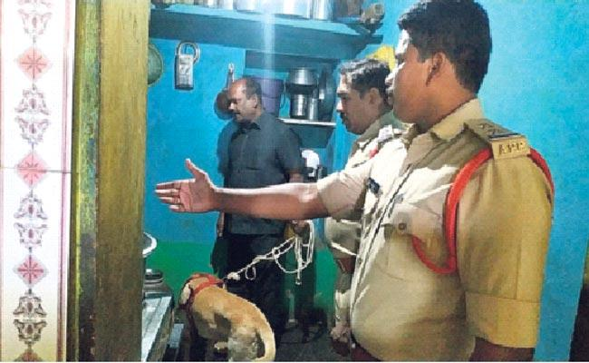 Thives Thieves Robbed Six Houses At A Time In Kurnool - Sakshi