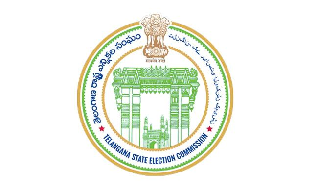 State Election Commission Started Work For Municipal Elections - Sakshi