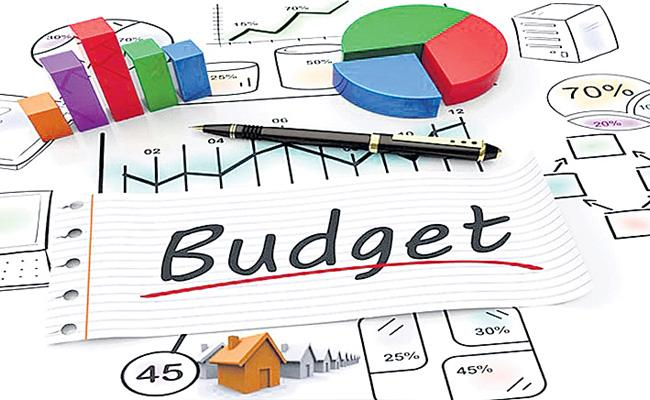 Central Finance Department Planning To Use Social Media For Budget Subject - Sakshi