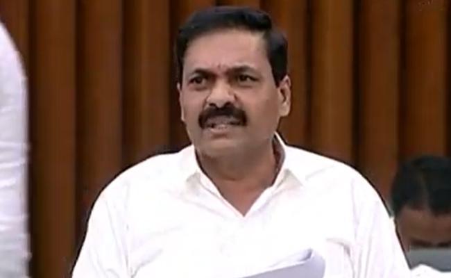 YSRCP MLA Kakani Govardhan Reddy Fires On Chandrababu Naidu - Sakshi