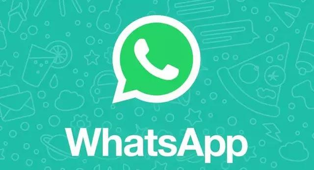 500 Croce people users download for WHATSApp - Sakshi